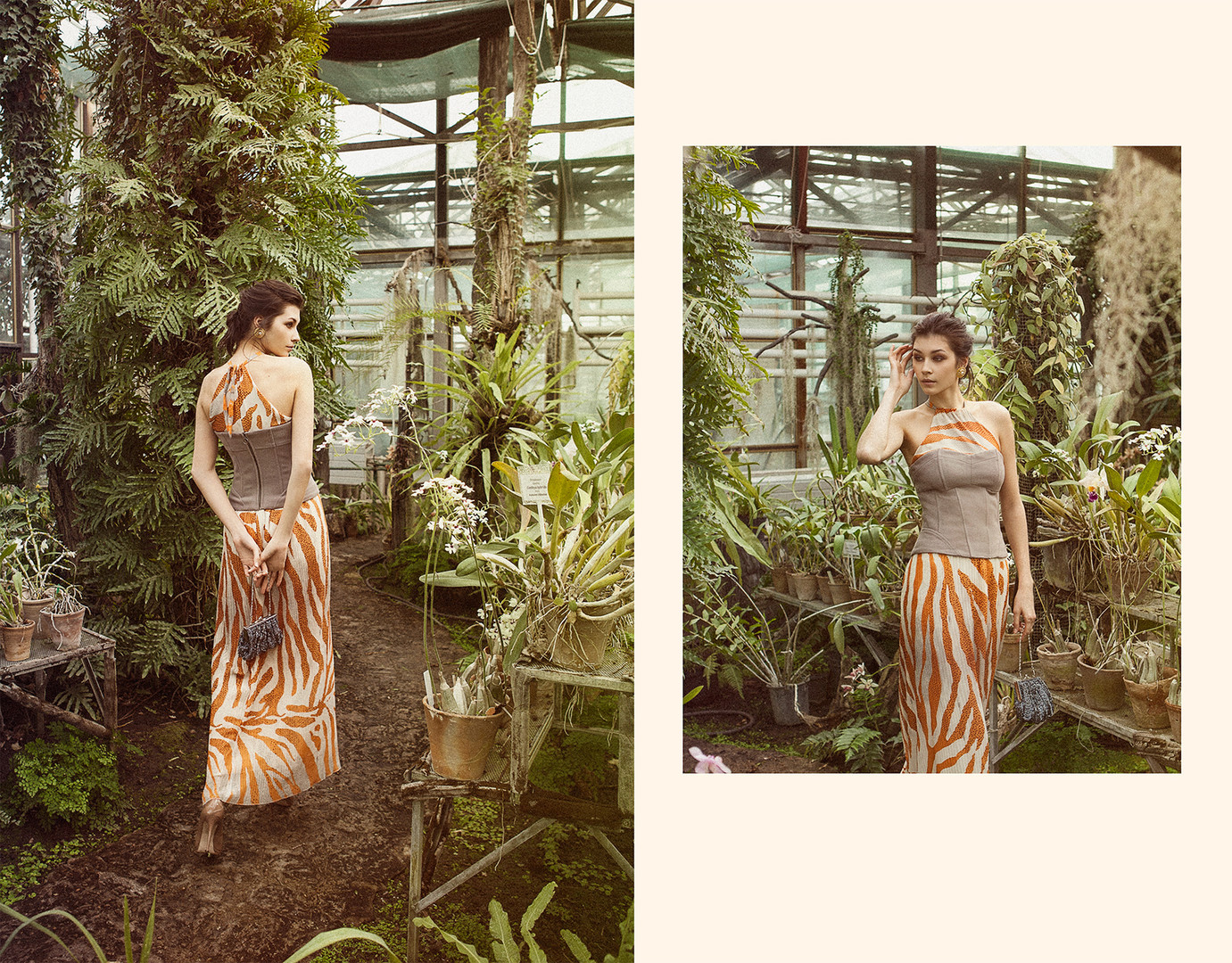 Wild Orchid | Fashion Story