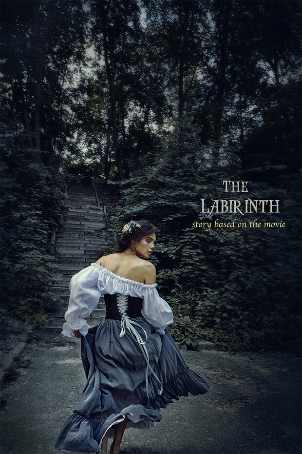 the LABYRINTH | story based on the movie